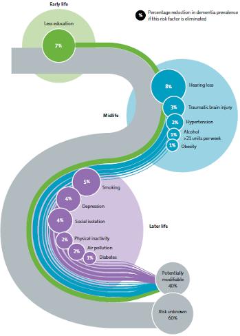 Représentation des différents facteurs de risque modifiables de démence en fonction du moment dans une vie
